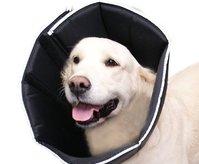 Halskrägen für Hunde und Katzen