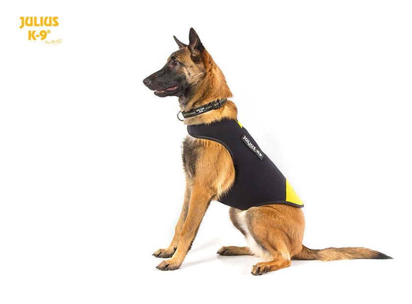 Idc Neopren Hundekleidung Von K9 Top Artikel K 228 Lteschutz