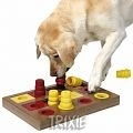 Dog Activity Chess