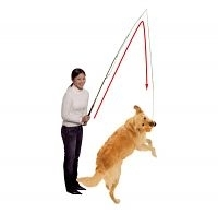 Dog Dangler Trainingsangel