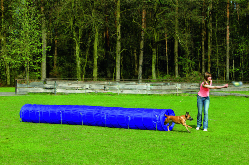 KARLIE AGILITY TUNNEL, GROSS 525 X 60 X 60 CM