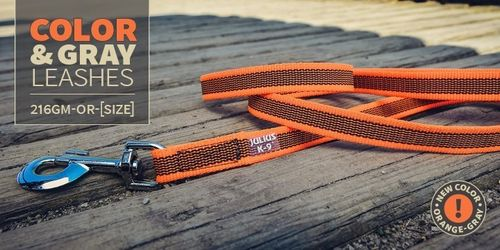 Color&Gray®-Leine in Orange  von K9